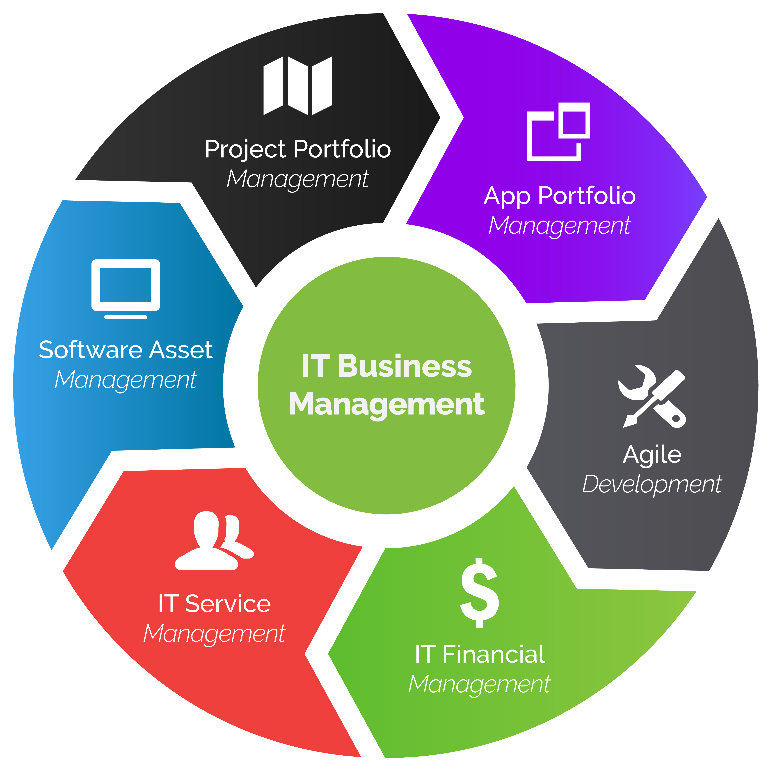 it business management overview